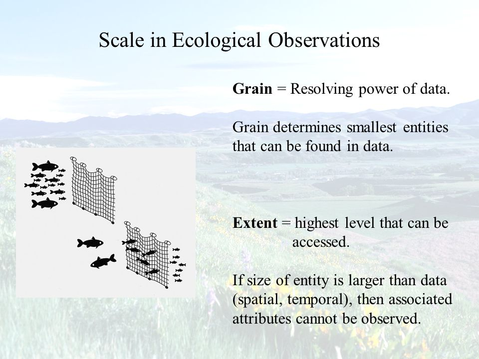 Grain = Resolving power of data. Grain determines smallest entities that can be found in data. Extent = highest level that can be accessed. If size of