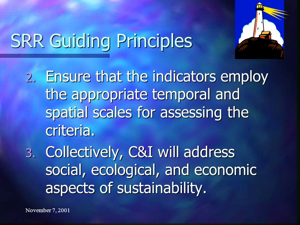 November 7, 2001 SRR Guiding Principles 2. Ensure that the indicators employ the appropriate temporal and spatial scales for assessing the criteria. 3