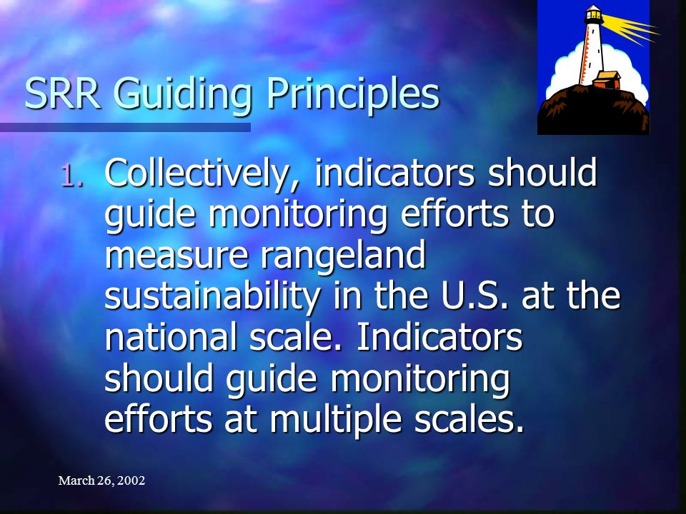 March 26, 2002 SRR Guiding Principles 1.