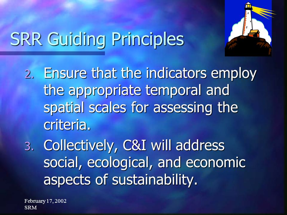 February 17, 2002 SRM SRR Guiding Principles 2. Ensure that the indicators employ the appropriate temporal and spatial scales for assessing the criter