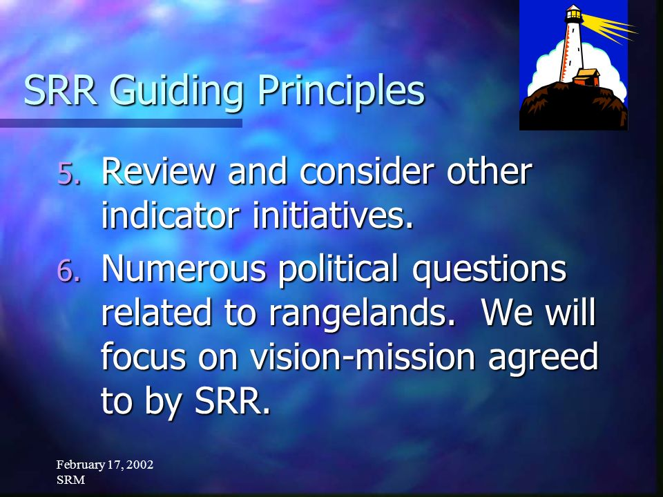 February 17, 2002 SRM SRR Guiding Principles 5. Review and consider other indicator initiatives.