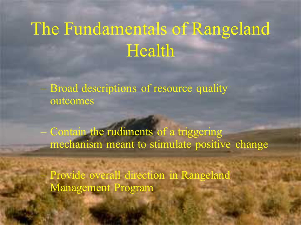 The Fundamentals of Rangeland Health –Broad descriptions of resource quality outcomes –Contain the rudiments of a triggering mechanism meant to stimulate positive change –Provide overall direction in Rangeland Management Program