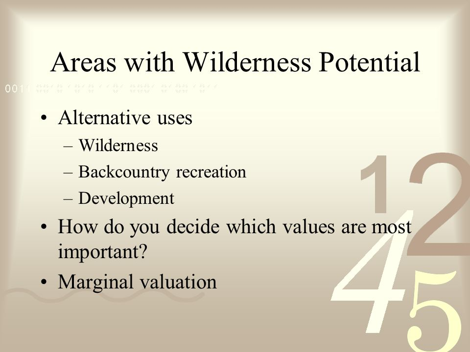 Areas with Wilderness Potential Alternative uses –Wilderness –Backcountry recreation –Development How do you decide which values are most important.