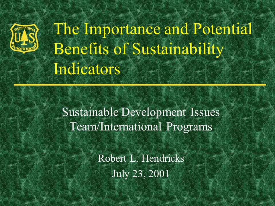 The Importance and Potential Benefits of Sustainability Indicators Sustainable Development Issues Team/International Programs Robert L.