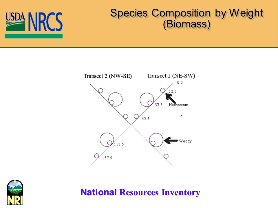 National Resources Inventory Species Composition by Weight (Biomass)