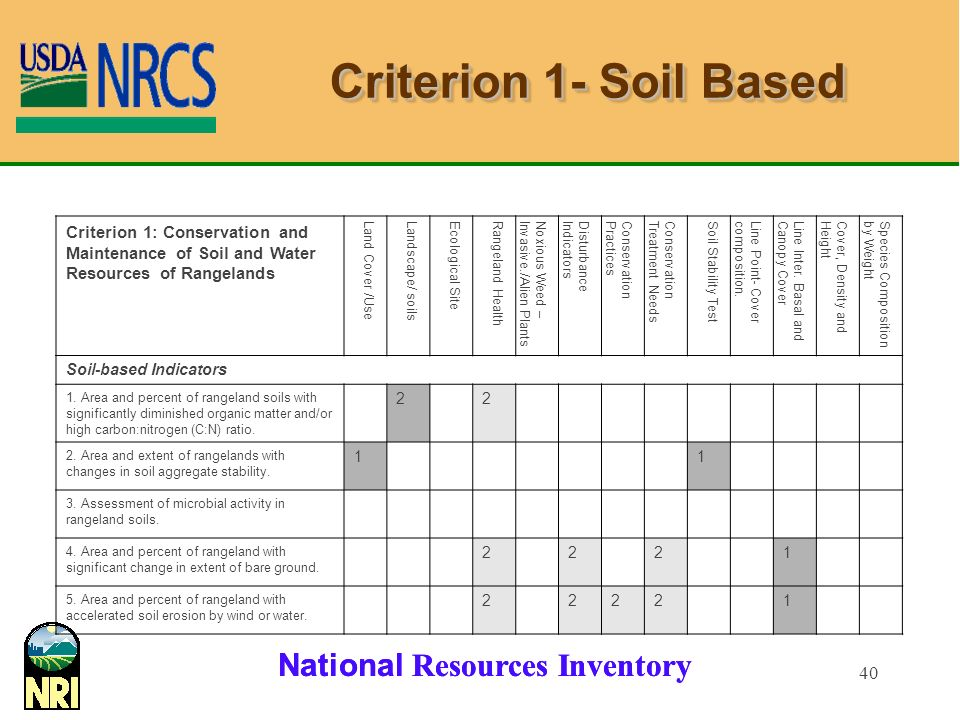 National Resources Inventory 40 Criterion 1- Soil Based Criterion 1: Conservation and Maintenance of Soil and Water Resources of Rangelands Land Cover /UseLandscape/ soilsEcological SiteRangeland HealthNoxious Weed –Invasive./Alien PlantsDisturbanceIndicatorsConservationPracticesConservationTreatment NeedsSoil Stability TestLine Point- Covercomposition.Line Inter.