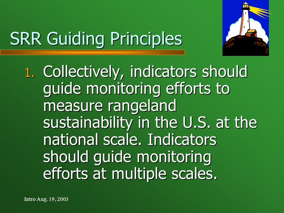 Intro Aug.19, 2003 SRR Guiding Principles 1.