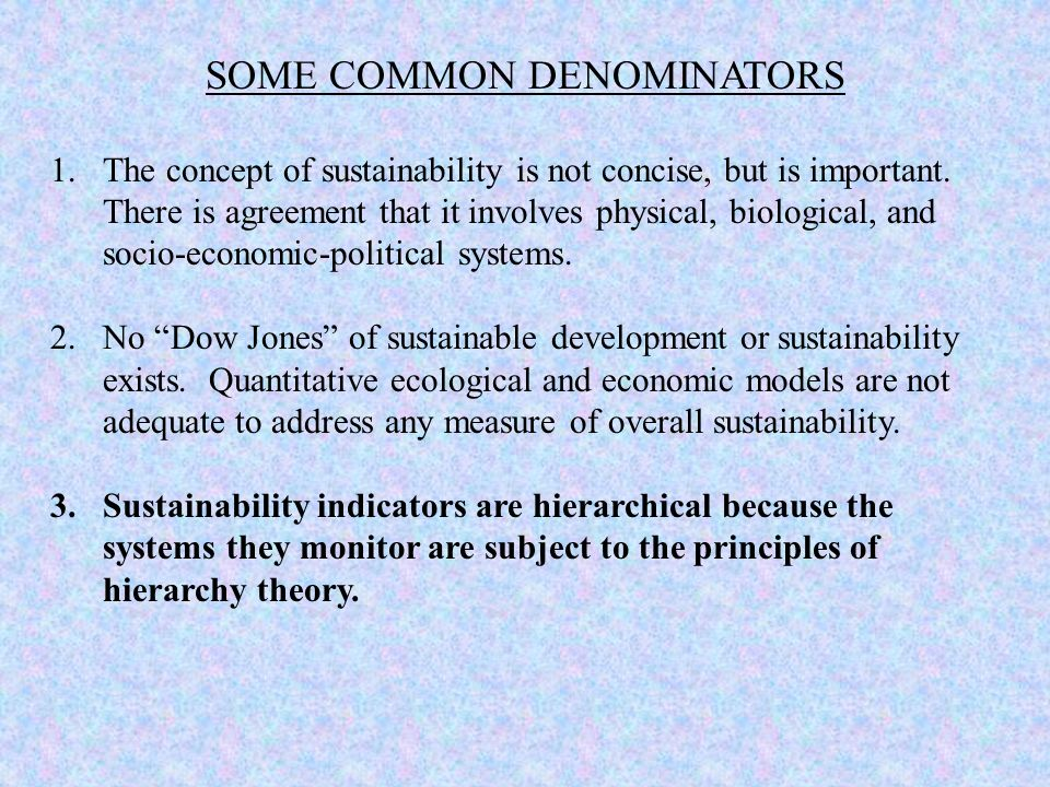 SOME COMMON DENOMINATORS 1.The concept of sustainability is not concise, but is important. There is agreement that it involves physical, biological, a