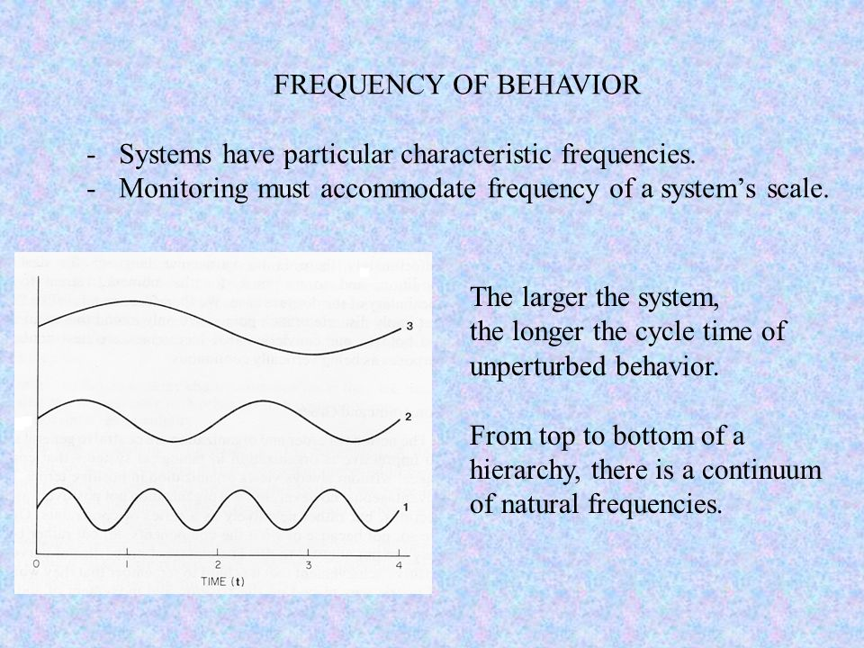 The larger the system, the longer the cycle time of unperturbed behavior. From top to bottom of a hierarchy, there is a continuum of natural frequenci