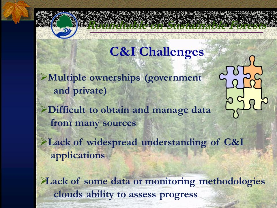 Roundtable on Sustainable Forests C&I Challenges Multiple ownerships (government and private) Difficult to obtain and manage data from many sources Lack of widespread understanding of C&I applications Lack of some data or monitoring methodologies clouds ability to assess progress