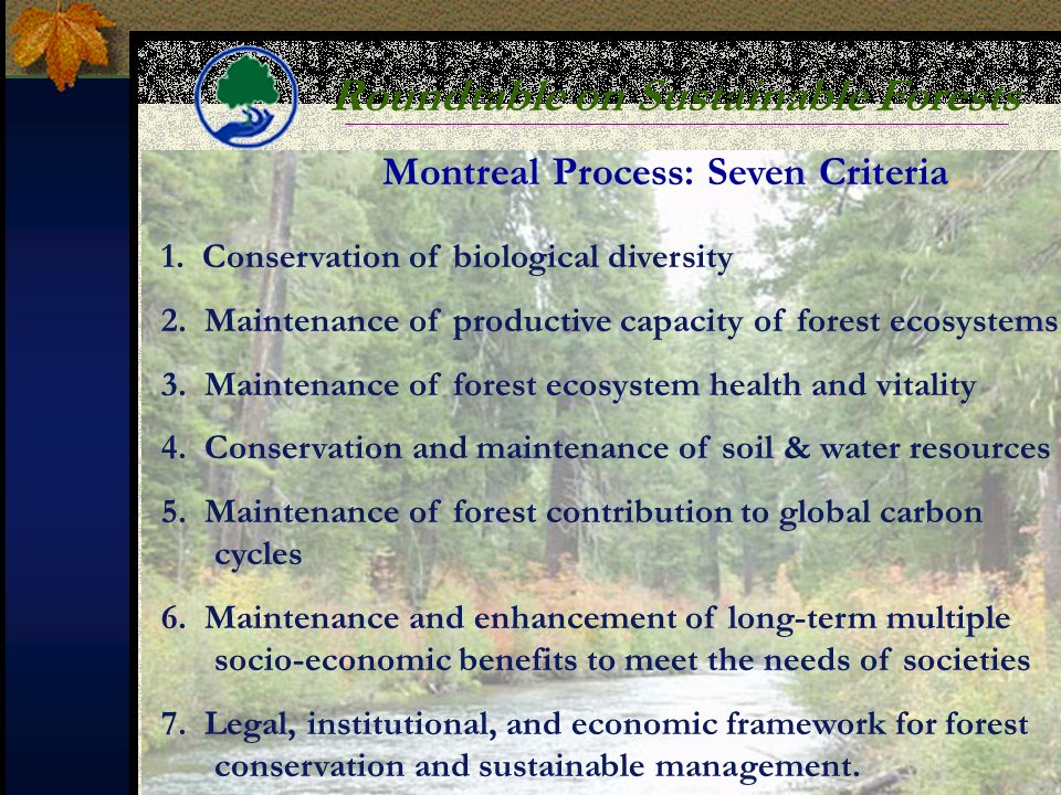 Roundtable on Sustainable Forests 1. Conservation of biological diversity 2.