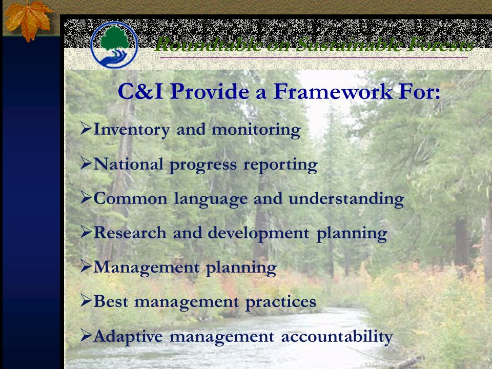 Roundtable on Sustainable Forests C&I Provide a Framework For: Inventory and monitoring National progress reporting Common language and understanding Research and development planning Management planning Best management practices Adaptive management accountability