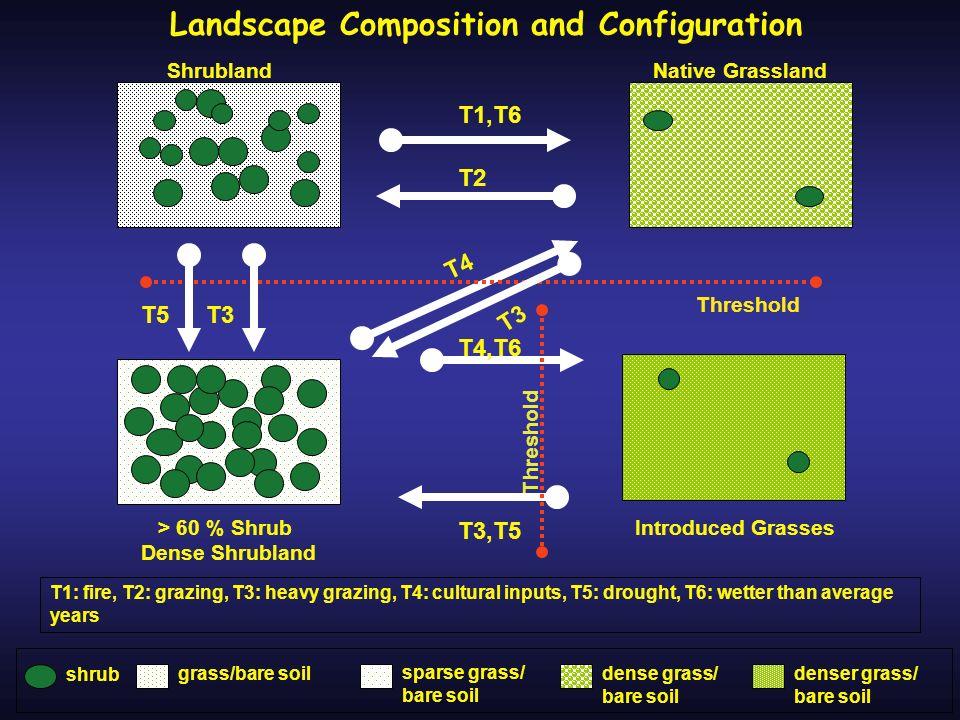 T4,T6 T4 Shrubland Native Grassland T3 T3,T5 Introduced Grasses> 60 % Shrub Dense Shrubland T1: fire, T2: grazing, T3: heavy grazing, T4: cultural inp