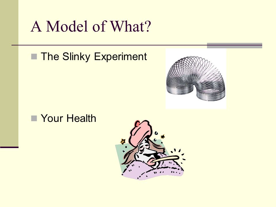 A Model of What? The Slinky Experiment Your Health