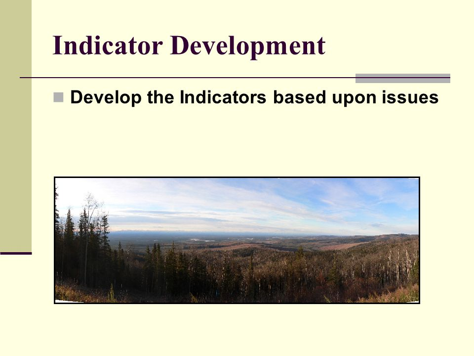 Indicator Development Develop the Indicators based upon issues