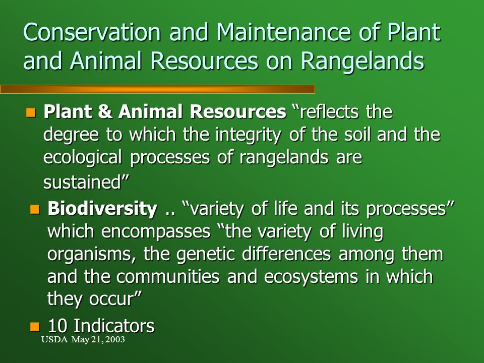 USDA May 21, 2003 Conservation and Maintenance of Plant and Animal Resources on Rangelands Plant & Animal Resources reflects the degree to which the integrity of the soil and the ecological processes of rangelands are sustained Plant & Animal Resources reflects the degree to which the integrity of the soil and the ecological processes of rangelands are sustained Biodiversity..