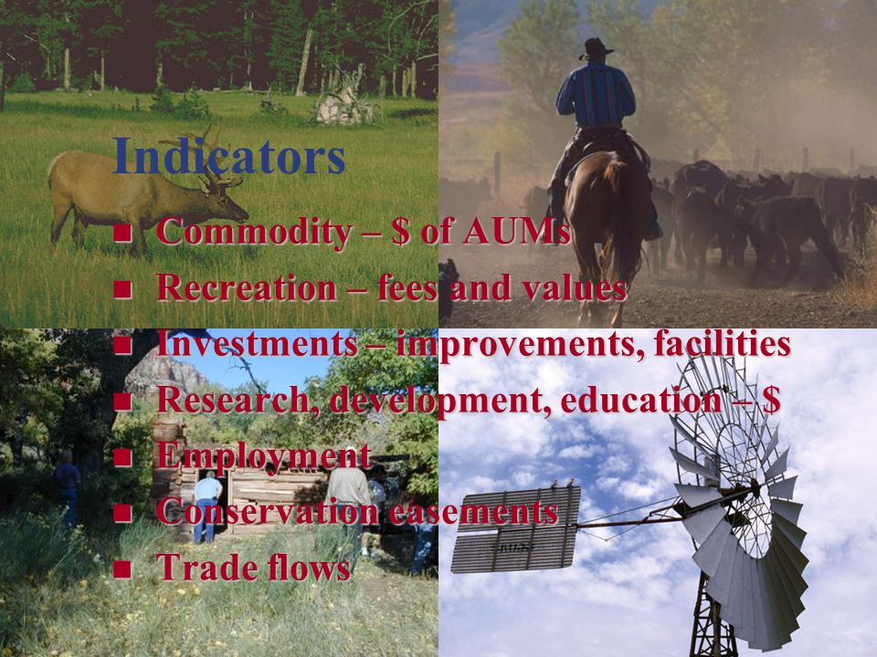 Indicators Commodity – $ of AUMs Commodity – $ of AUMs Recreation – fees and values Recreation – fees and values Investments – improvements, facilities Investments – improvements, facilities Research, development, education – $ Research, development, education – $ Employment Employment Conservation easements Conservation easements Trade flows Trade flows