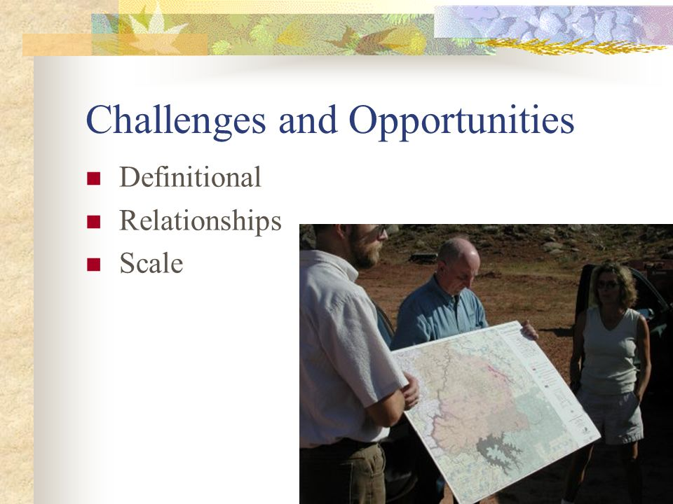Challenges and Opportunities Definitional Relationships Scale