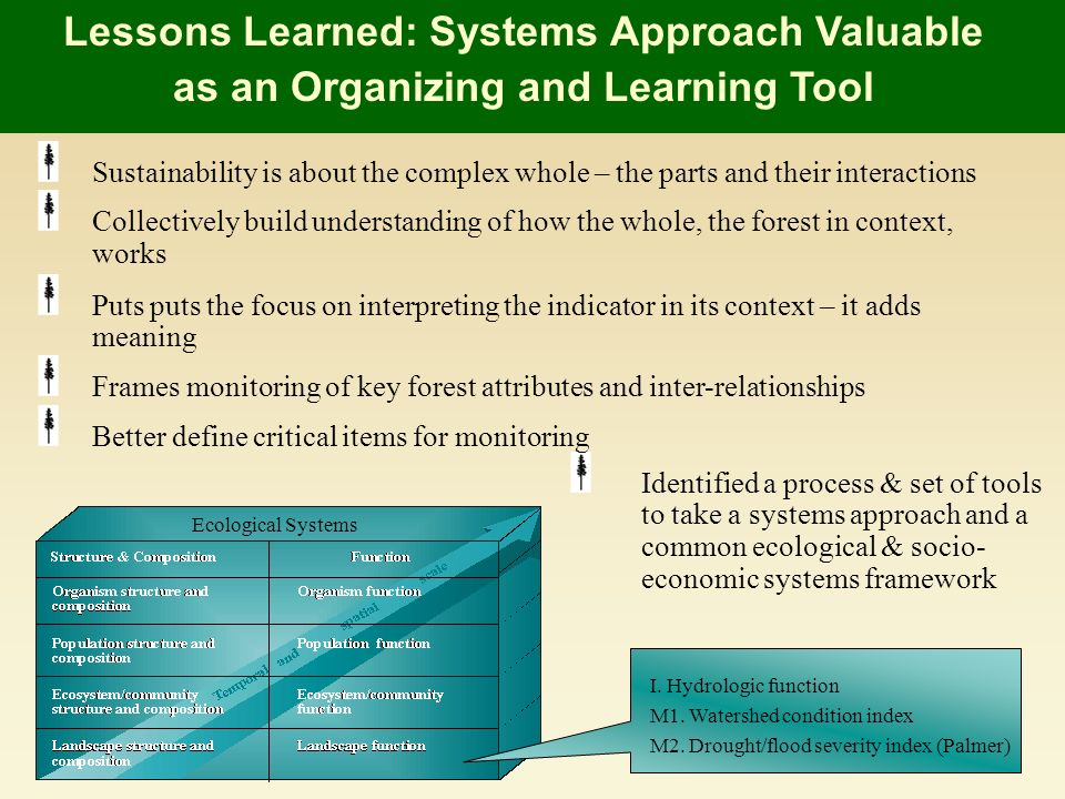 Lessons Learned: Systems Approach Valuable as an Organizing and Learning Tool I.