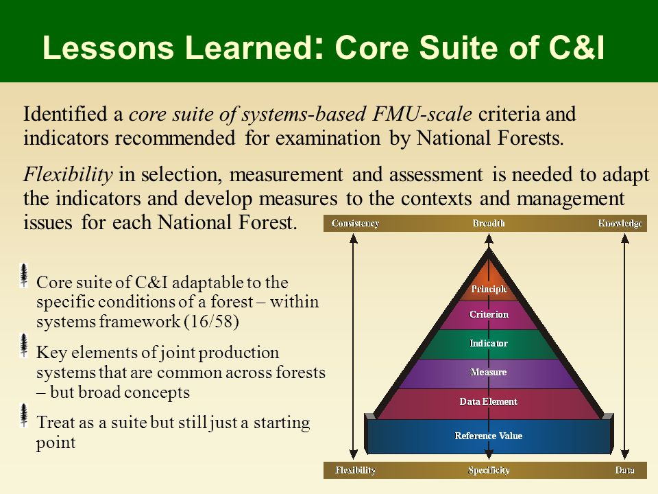 Identified a core suite of systems-based FMU-scale criteria and indicators recommended for examination by National Forests.
