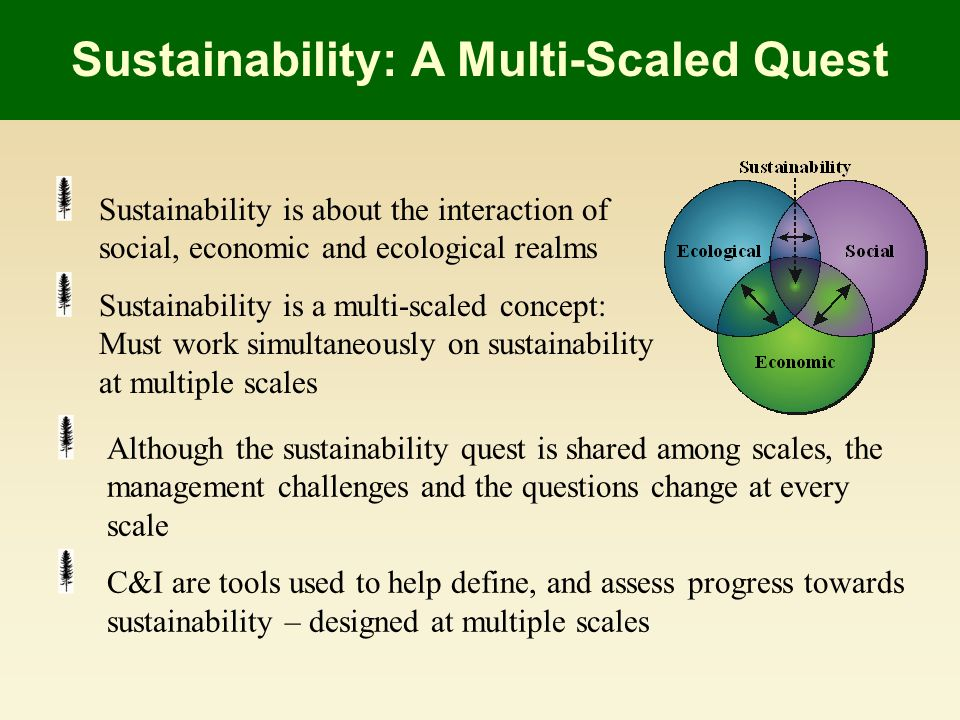 Sustainability: A Multi-Scaled Quest Sustainability is about the interaction of social, economic and ecological realms Sustainability is a multi-scaled concept: Must work simultaneously on sustainability at multiple scales Although the sustainability quest is shared among scales, the management challenges and the questions change at every scale C&I are tools used to help define, and assess progress towards sustainability – designed at multiple scales