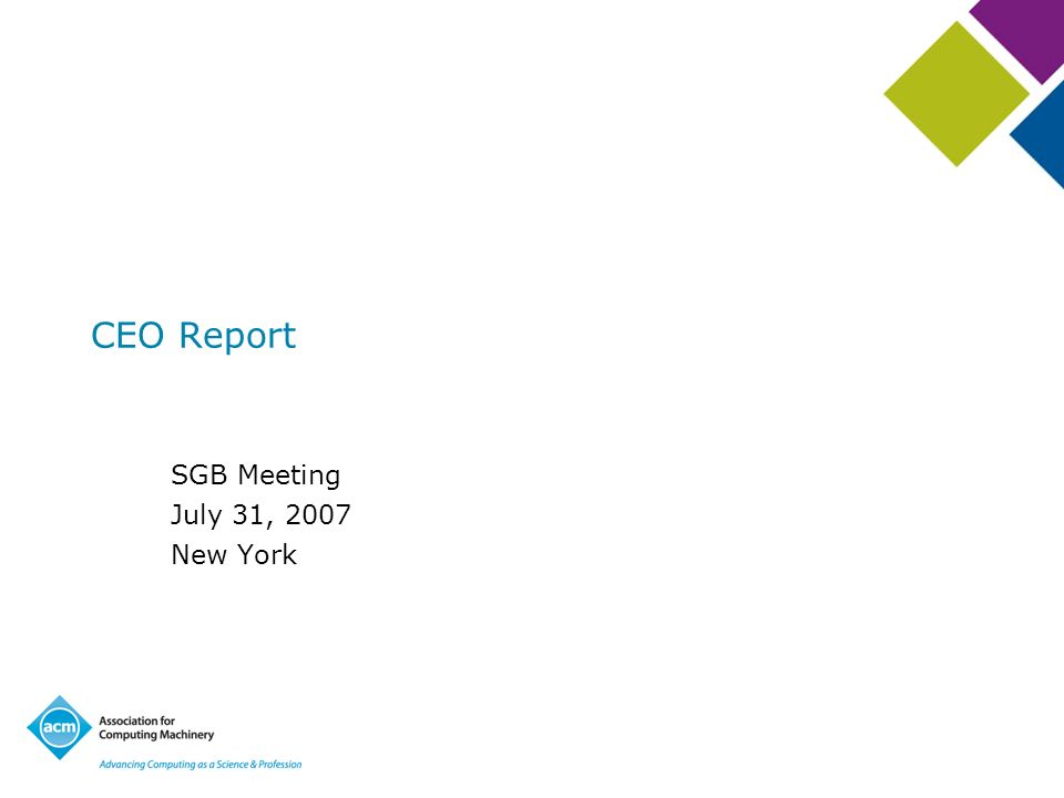 CEO Report SGB Meeting July 31, 2007 New York