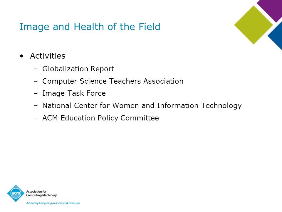 Image and Health of the Field Activities –Globalization Report –Computer Science Teachers Association –Image Task Force –National Center for Women and