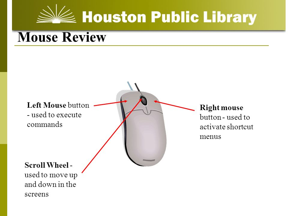 Left Mouse button - used to execute commands Right mouse button - used to activate shortcut menus Scroll Wheel - used to move up and down in the screens Mouse Review