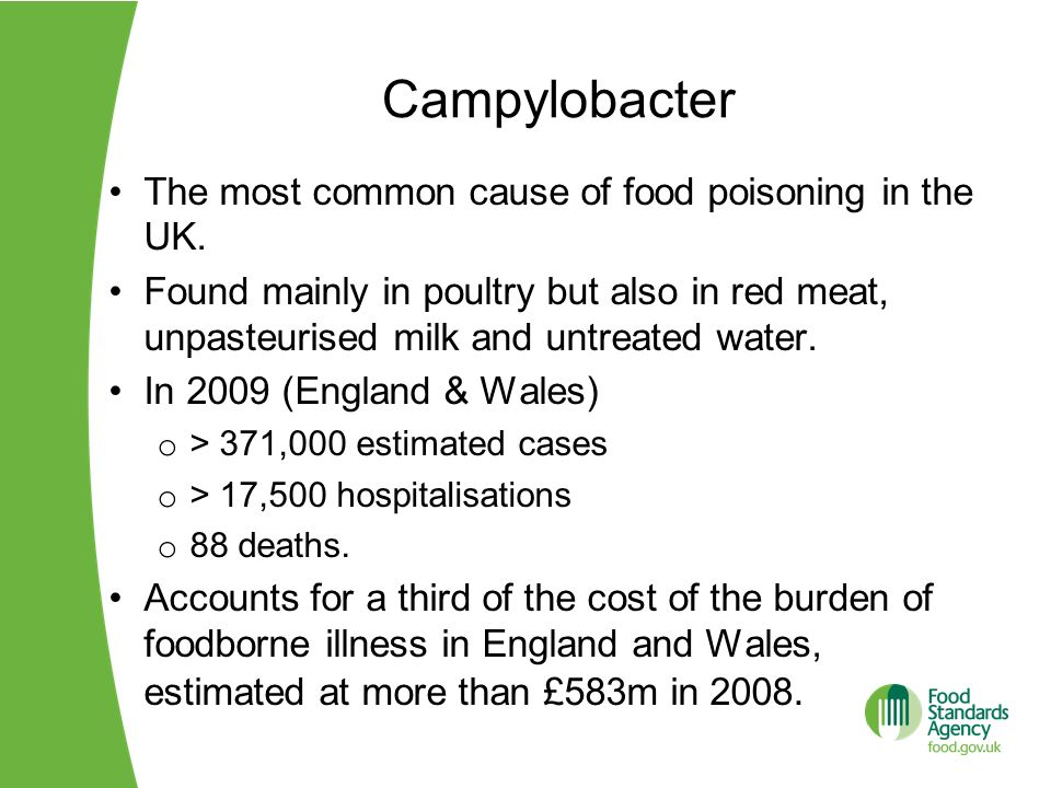 Campylobacter The most common cause of food poisoning in the UK. Found mainly in poultry but also in red meat, unpasteurised milk and untreated water.