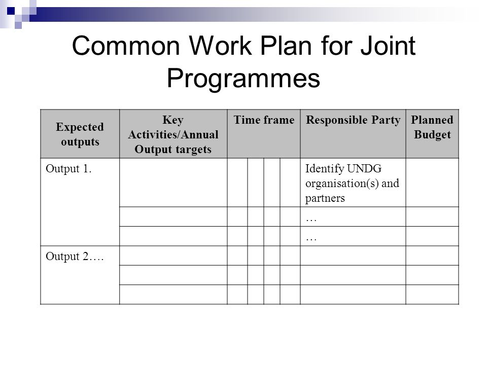 Expected outputs Key Activities/Annual Output targets Time frameResponsible PartyPlanned Budget Output 1.Identify UNDG organisation(s) and partners …