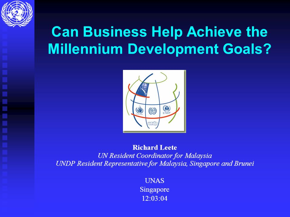 Can Business Help Achieve the Millennium Development Goals.