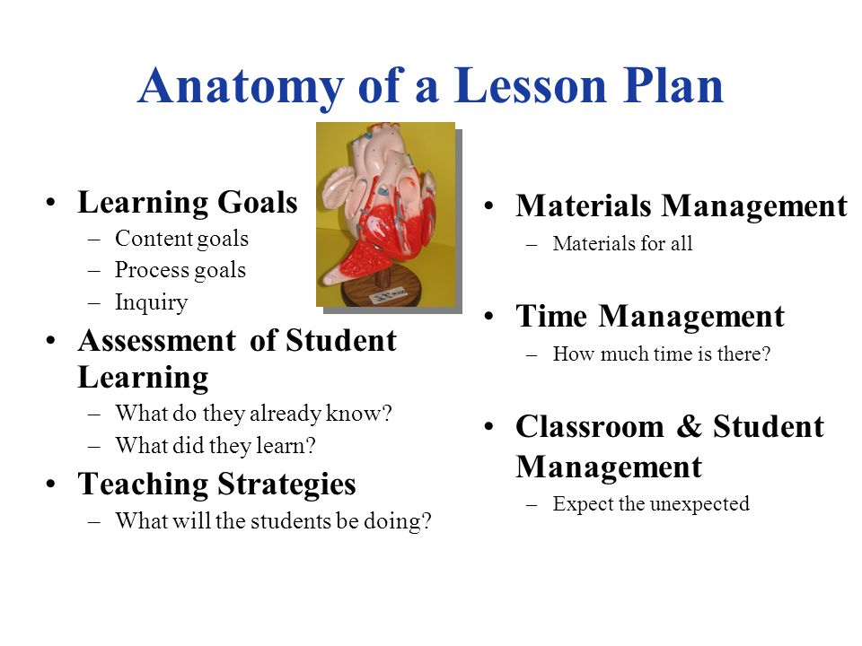 How can all students be engaged Lesson Plan Teaching Strategies