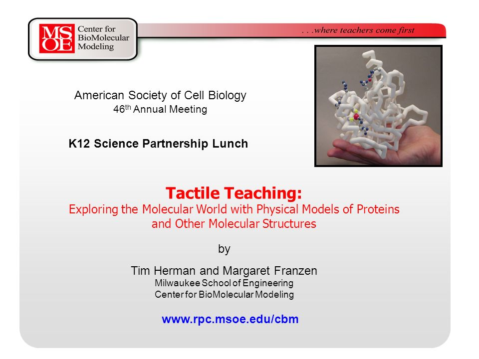 Tactile Teaching: Exploring the Molecular World with Physical Models of Proteins and Other Molecular Structures by Tim Herman and Margaret Franzen Milwaukee School of Engineering Center for BioMolecular Modeling   K12 Science Partnership Lunch American Society of Cell Biology 46 th Annual Meeting