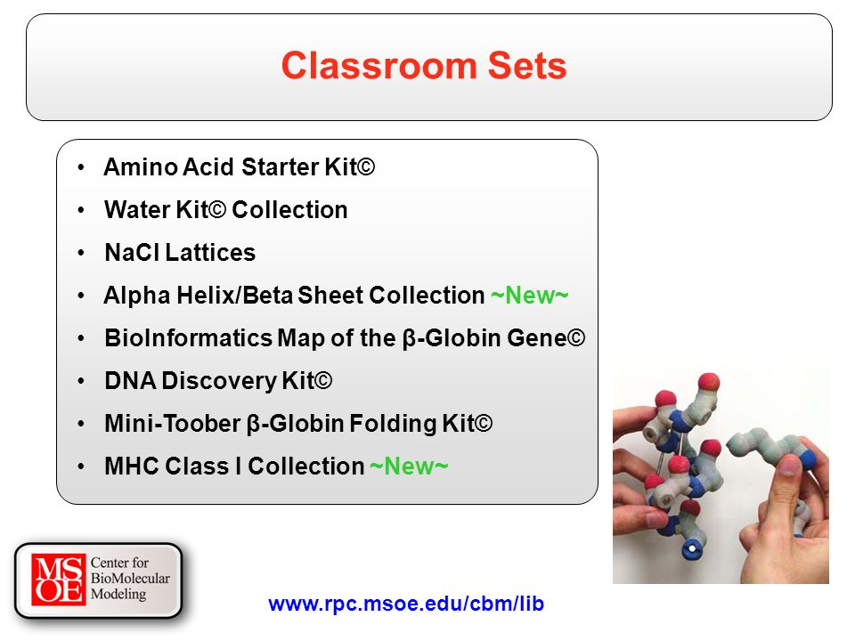 Amino Acid Starter Kit© Water Kit© Collection NaCl Lattices Alpha Helix/Beta Sheet Collection ~New~ BioInformatics Map of the β-Globin Gene© DNA Discovery Kit© Mini-Toober β-Globin Folding Kit© MHC Class I Collection ~New~ Classroom Sets