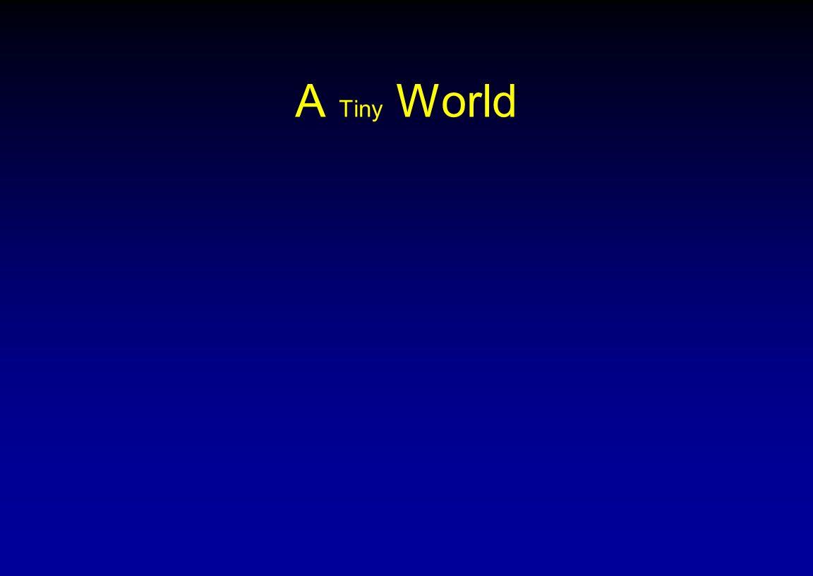 A Tiny World
