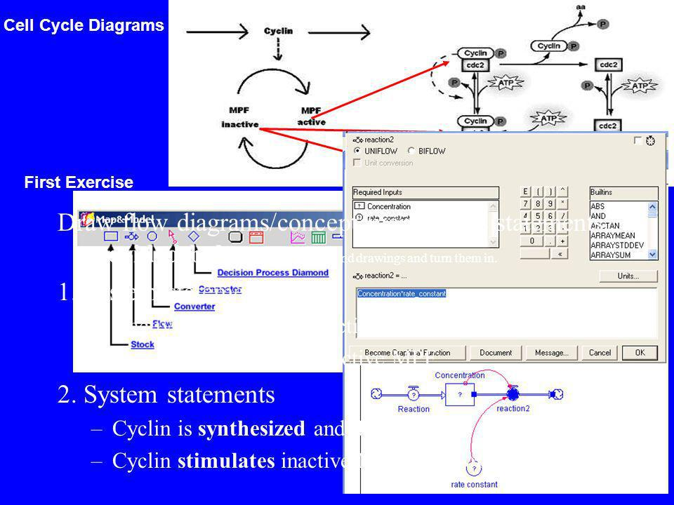 Cell Cycle Diagrams Draw flow diagrams/concept map for the statements provided below.