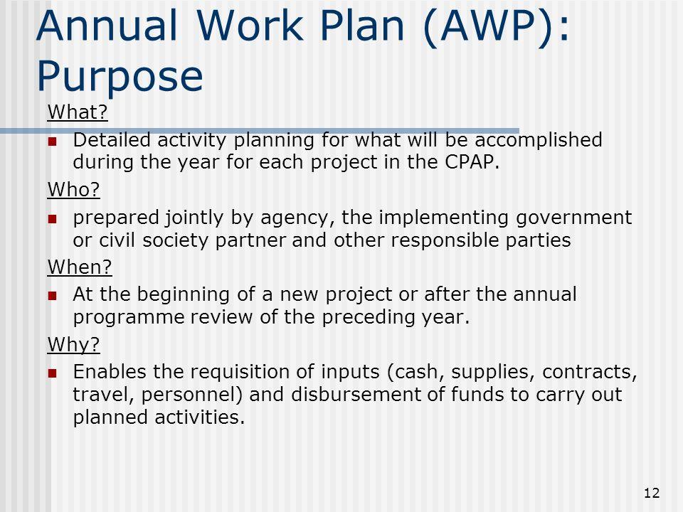 12 Annual Work Plan (AWP): Purpose What.