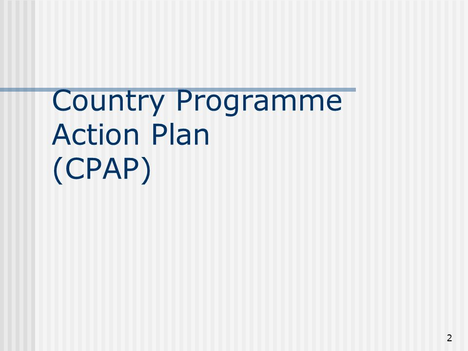 2 Country Programme Action Plan (CPAP)