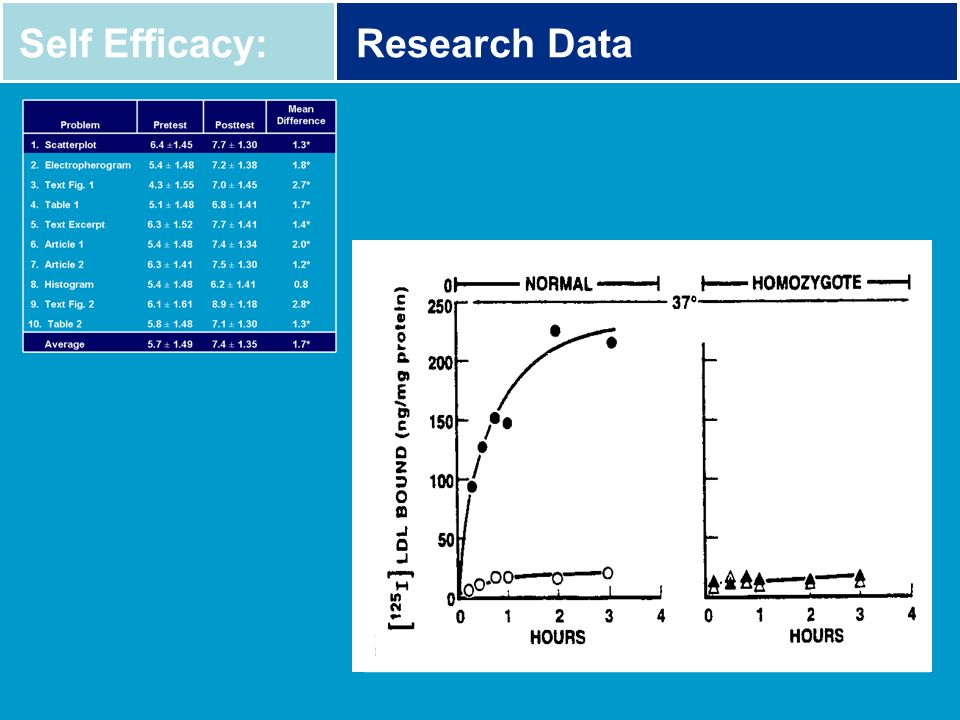 Self Efficacy:Research Data