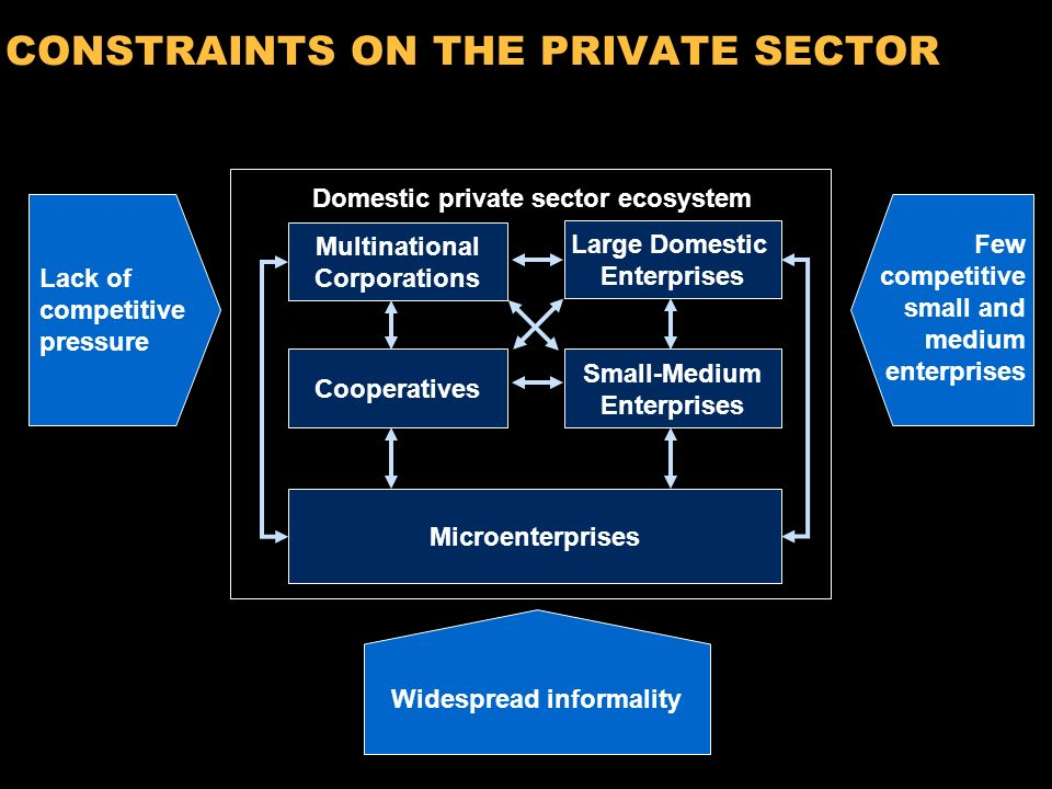 9 COMPONENTS OF THE PRIVATE SECTOR – SEEN AS AN ECOSYTEM Microenterprises Cooperatives Domestic private sector ecosystem Multinational Corporations Large Domestic Enterprises Small-Medium Enterprises