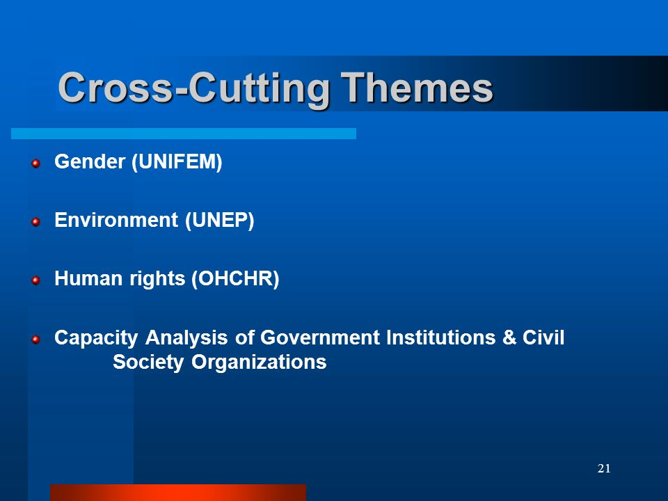 21 Cross-Cutting Themes Gender (UNIFEM) Environment (UNEP) Human rights (OHCHR) Capacity Analysis of Government Institutions & Civil Society Organizations