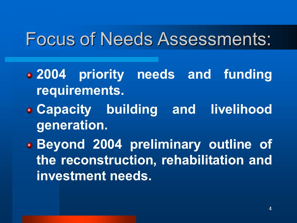 4 Focus of Needs Assessments: 2004 priority needs and funding requirements.
