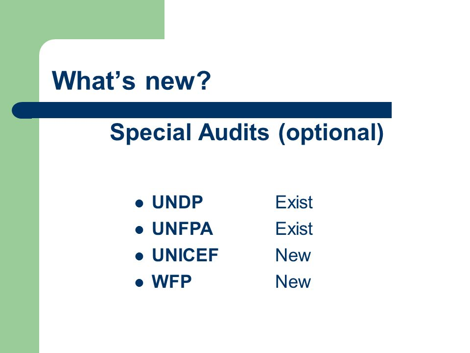 Whats new Special Audits (optional) UNDP Exist UNFPAExist UNICEFNew WFPNew