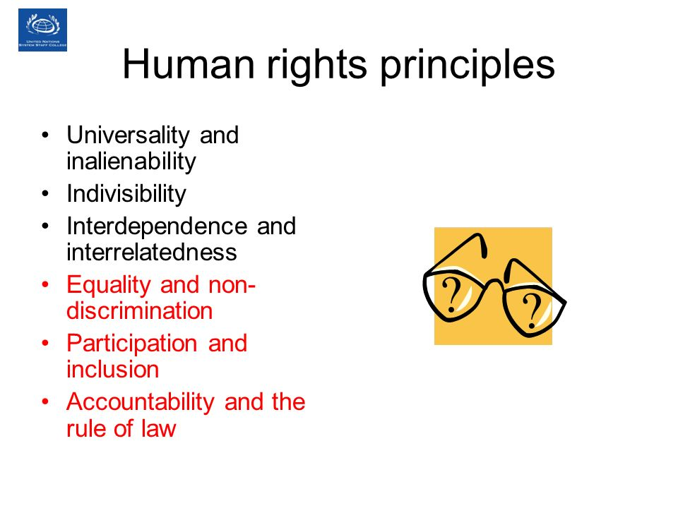 Human rights principles Universality and inalienability Indivisibility Interdependence and interrelatedness Equality and non- discrimination Participation and inclusion Accountability and the rule of law