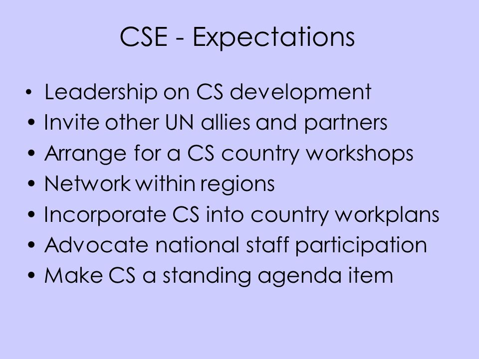 CSE - Expectations Leadership on CS development Invite other UN allies and partners Arrange for a CS country workshops Network within regions Incorpor