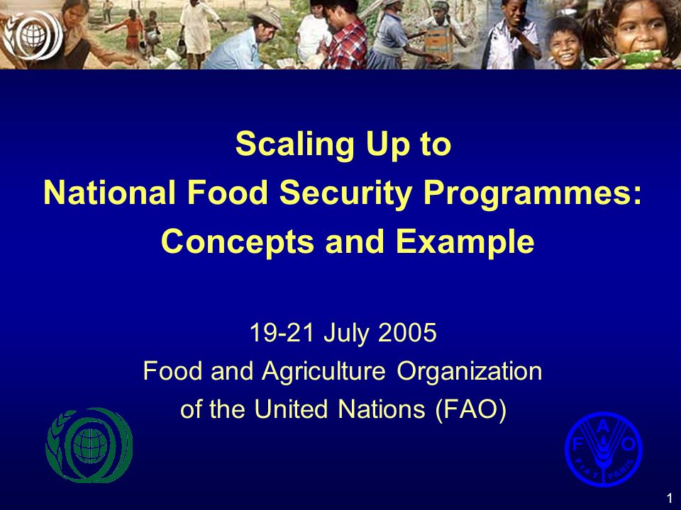 1 Scaling Up to National Food Security Programmes: Concepts and Example 19-21 July 2005 Food and Agriculture Organization of the United Nations (FAO)