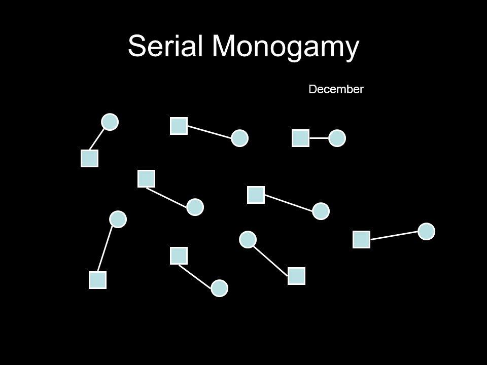 Serial Monogamy December