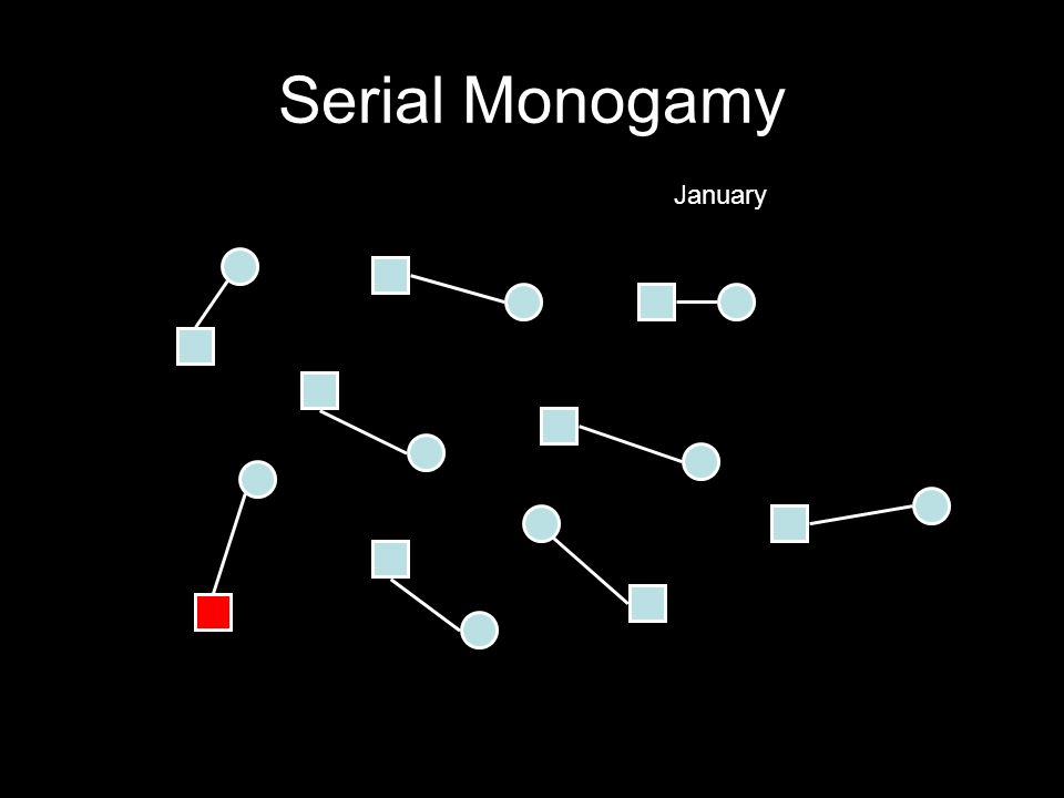 Serial Monogamy January