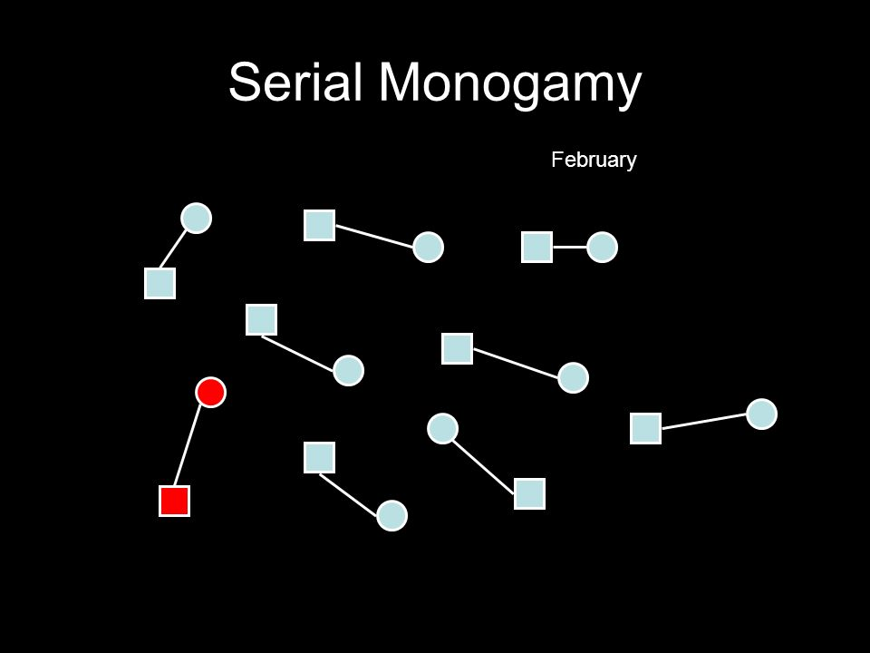 Serial Monogamy February