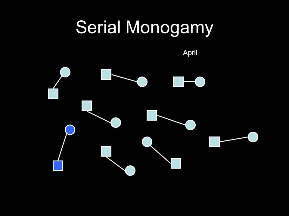 Serial Monogamy April
